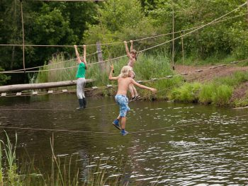 Foto's gemaakt door: Archief It Fryske Gea