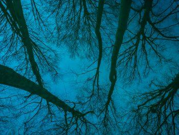 Foto's gemaakt door: Johannes Bosgra